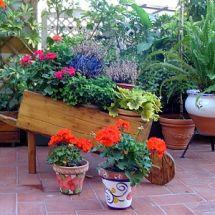 El jardín de macetas