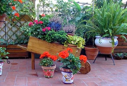 El jard n de macetas blog y noticias - Macetas de jardin ...